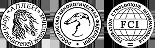 "Кинологический клуб      ""Аллен"""